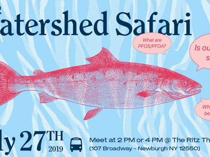 Discover Your Watershed! Go on Safari with NCWP, Saturday, July 27, 2019