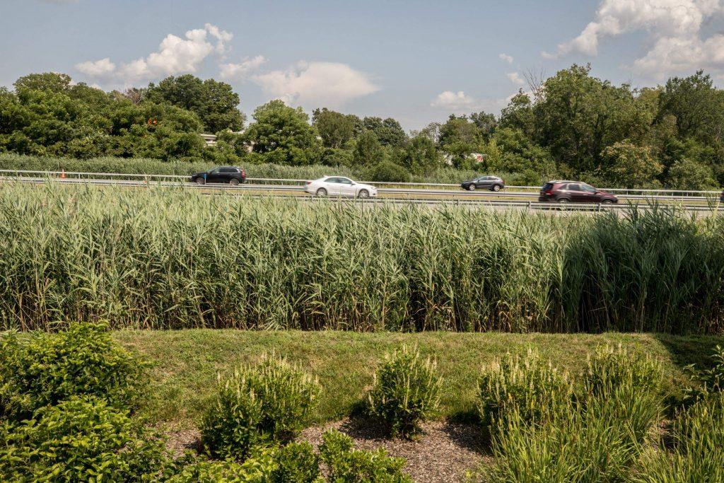 Watershed Tour: Green Infrastructure