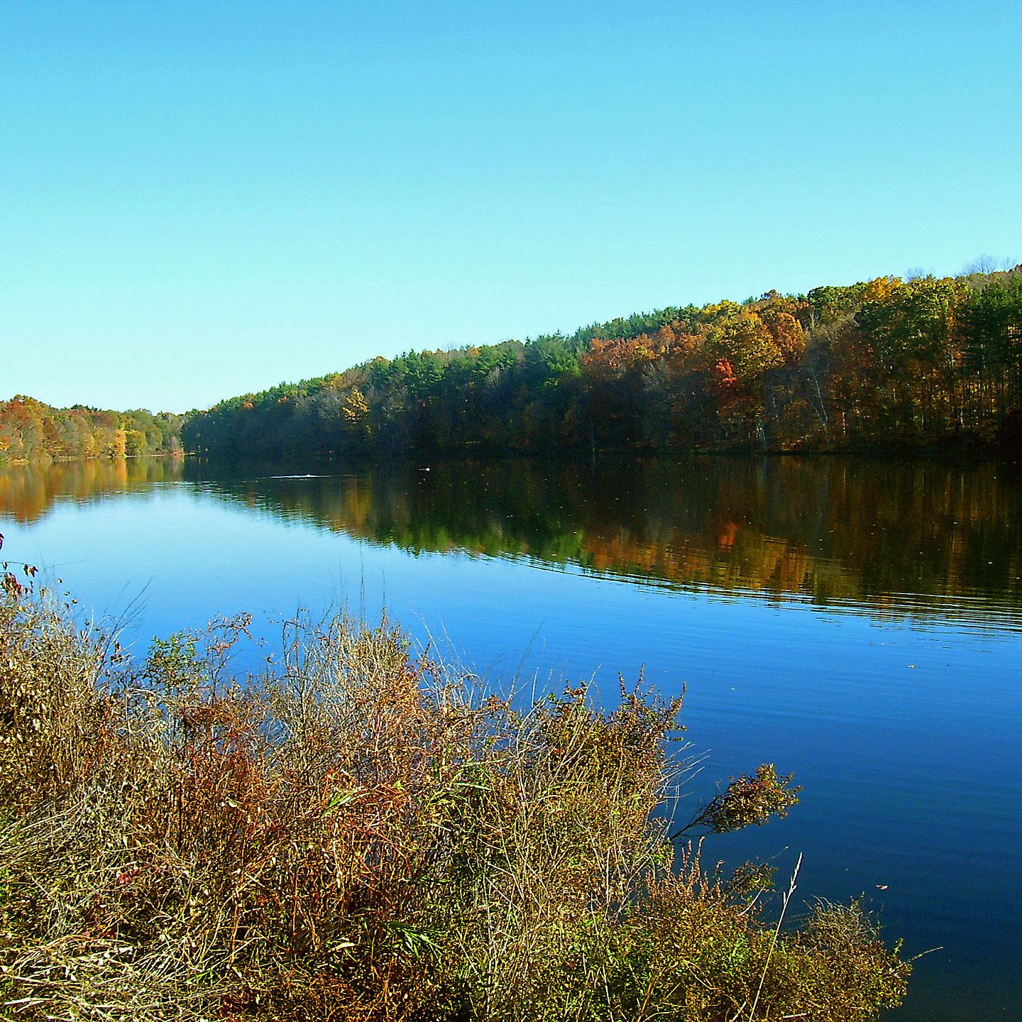 Browns Pond, a 0.3 square mile pond that is one of the City of Newburgh's Drinking Water Reservoirs h