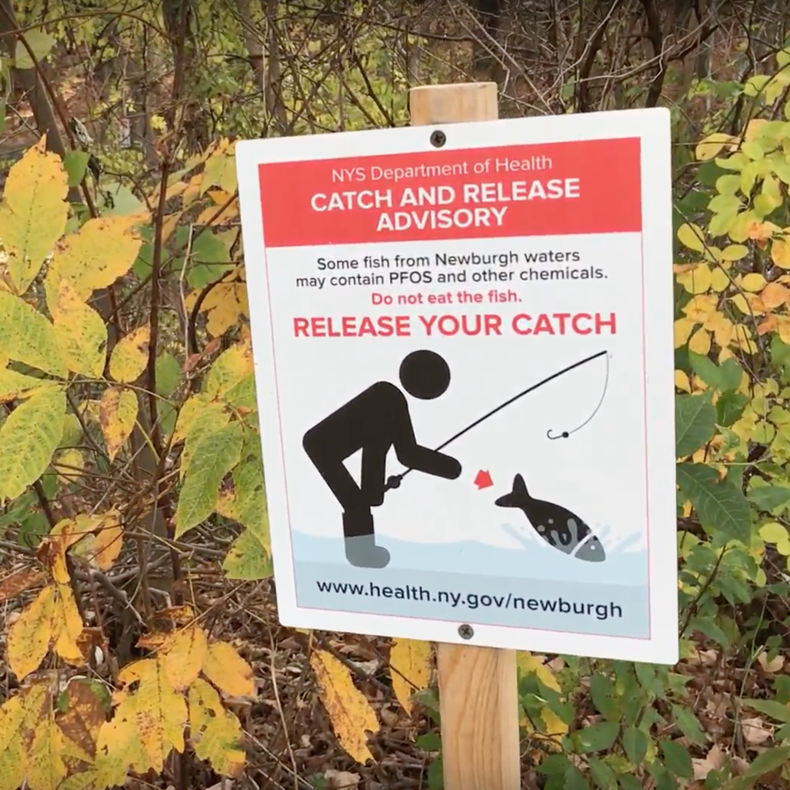 Fishing Advisory at Silver Stream